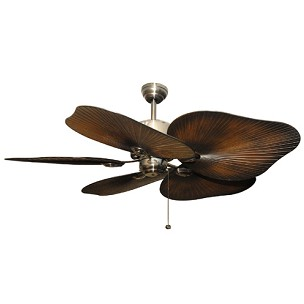 Ceiling Fan Screws Wanted Imagery