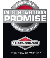 Briggs & Stratton Engine Image